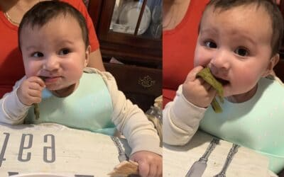 Lets Talk Solids: baby-led weaning edition